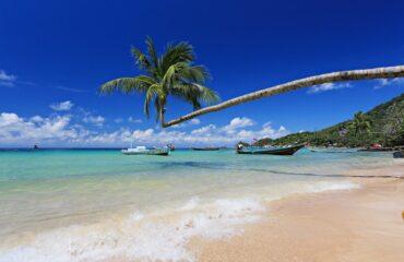 Best area in Koh Tao Sairee Beach