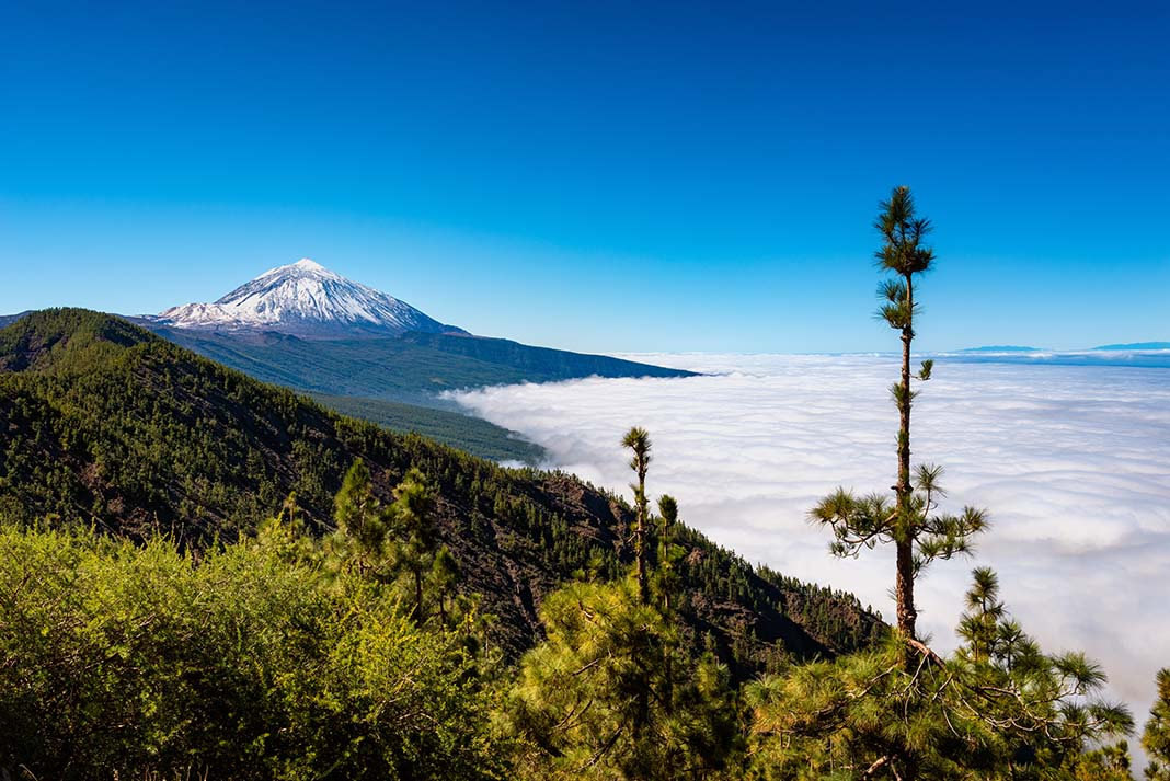 Where to Stay in Tenerife: Best Areas