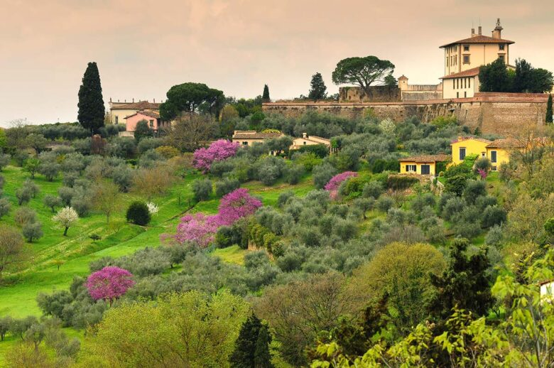See the Belvedere Fort in Florence