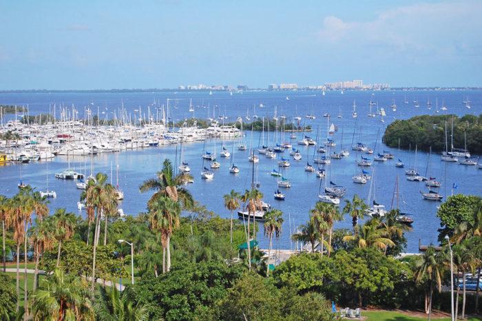 Stay in Miami: Coconut Grove area