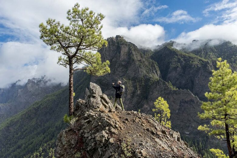 The Breñas of La Palma refer to a couple of expansive regions