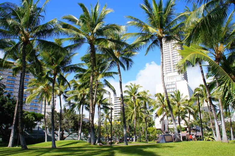 Oahu, where to stay in Hawaii for nightlife